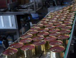 Как открыть бизнес по производству тушенки