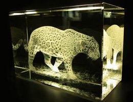 Уникальная бизнес идея: лазерная гравировка внутри стекла