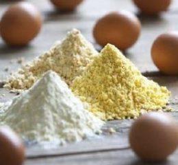 Как наладить производство яичного порошка