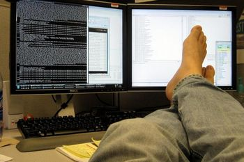 заработок программиста