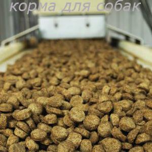 Изготовление сухого корма для собак