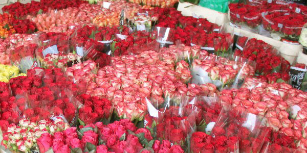 Заработок на розах