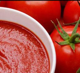Производство томатной пасты как бизнес