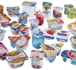 Как открыть производство йогурта в России?