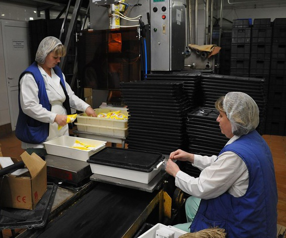 Фасовка готового творога на заводе двумя работниками.