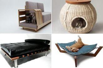 Производство и продажа мебели для животных