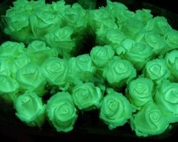Бизнес-идея: светящиеся цветы