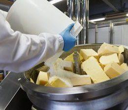 Производство плавленных сыров