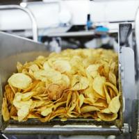 Производство чипсов: прибыльный бизнес в пищевой отрасли
