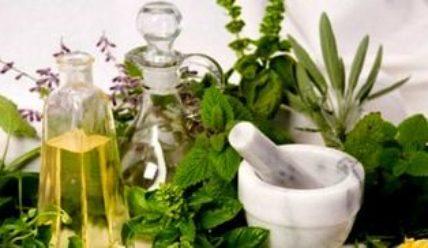 Способы развития бизнеса на лекарственных травах