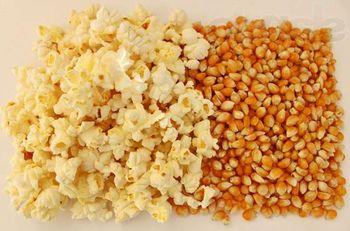 Изображение - Оборудование для попкорна 88