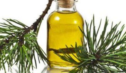 Производство пихтового масла