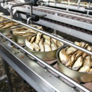 Производство консервов из рыбы