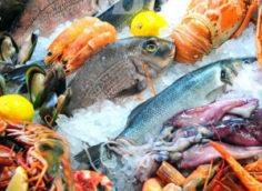 Рыбный магазин для заработка