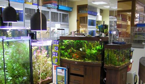 Наполненный некоторыми видами аквариумной продукции зоомагазин.