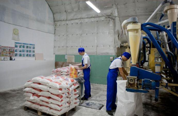 Процесс фасовки муки на производстве в упаковку двумя работниками.