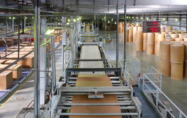 Процесс переработки картона и макулатуры на заводе как бизнес.
