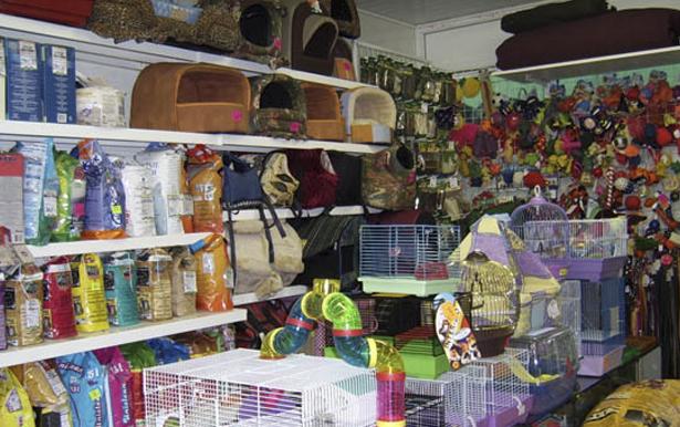 Ассортимент аксессуаров и другой продукции для домашних животных в зоомагазине.
