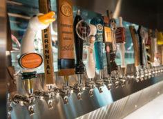Бизнес план по открытию собственной пивоварни