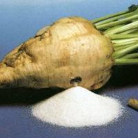 Открываем завод по производству сахара в России