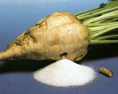 Оборудование для производства сахара из сахарной свеклы