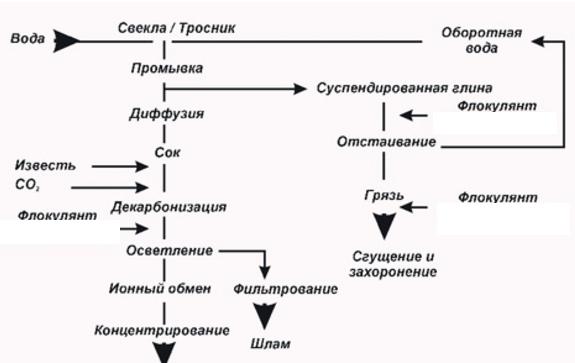 Детальная схема изготовления сахара для бизнеса.