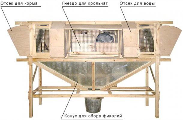 План домика для разведения кроликов.