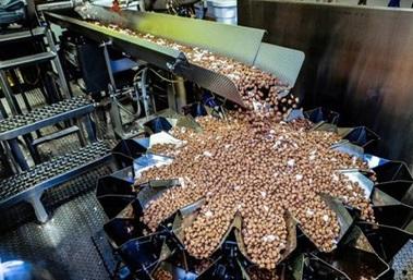 Изготовление корма на заводе.