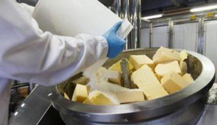 Изображение - Производство продуктов питания plavlenyj-syr-1-428x248