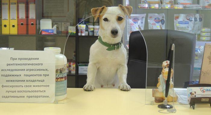 ветеринарная аптека-магазин