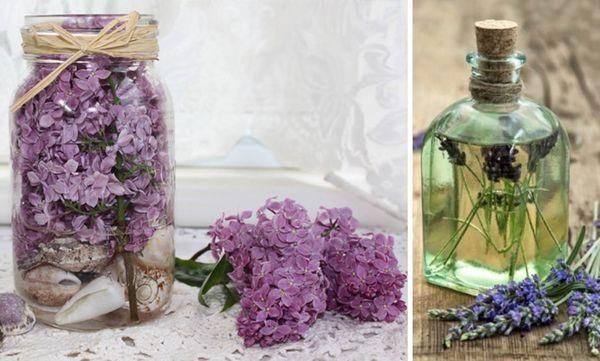 консервация цветов в глицерине