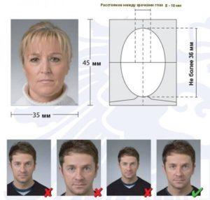 фото на шенген требования