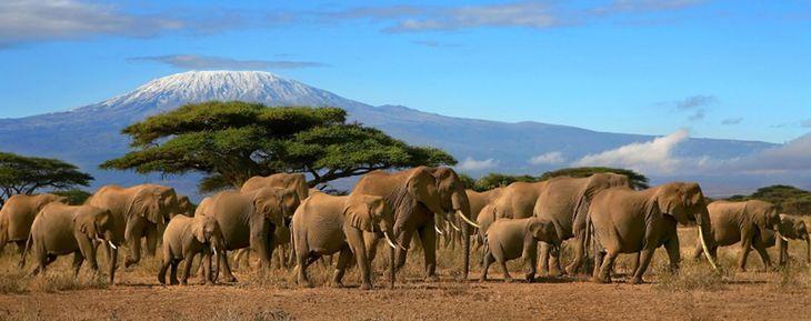Танзания без визы