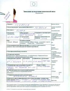 анкета на визу в Эстонию